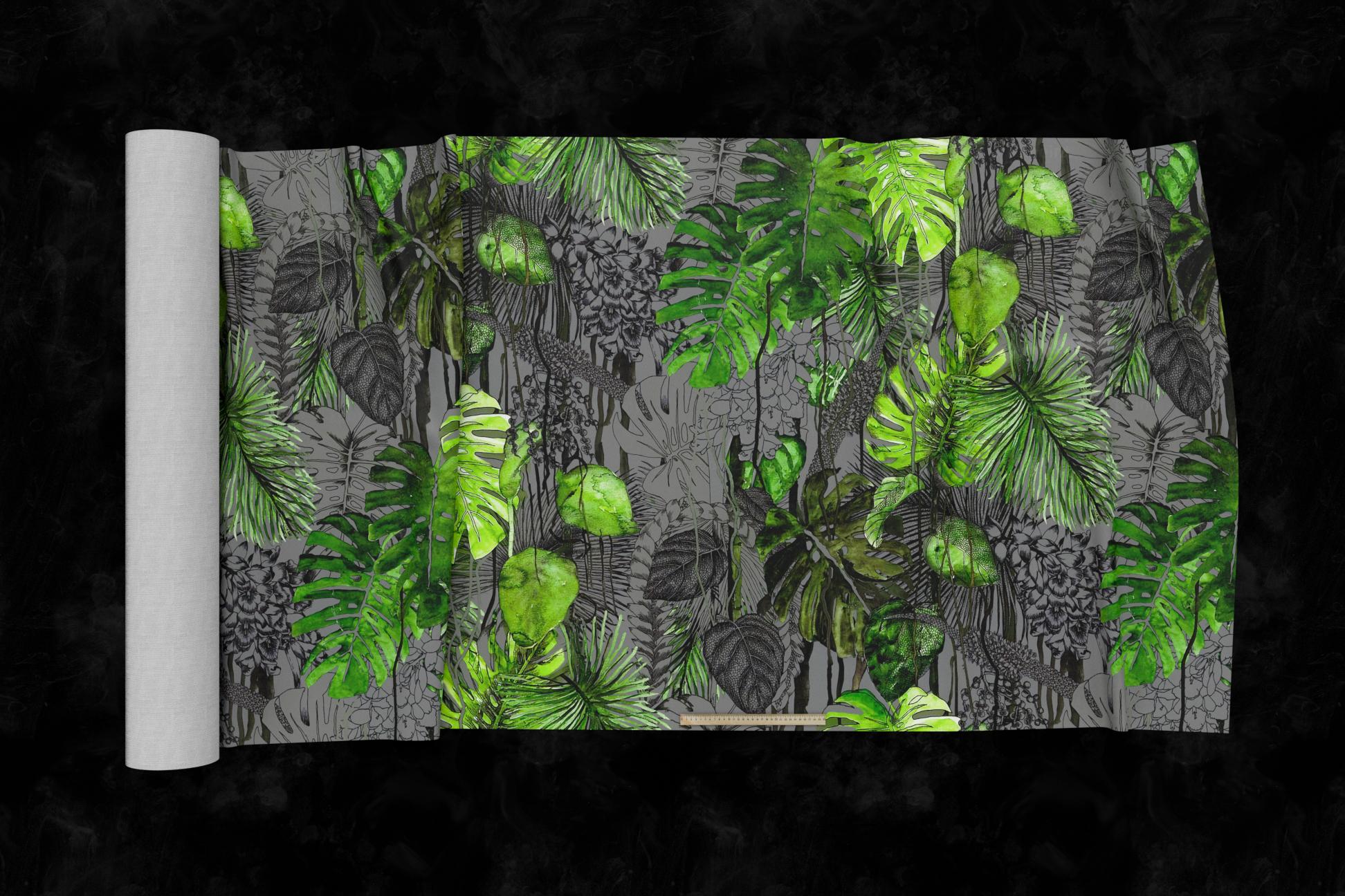 Tropics 02